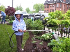 Homeowner Incentive Program